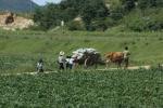 Những bí ẩn Triều Tiên qua con mắt của một nhà báo Việt Nam