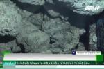 Khoét đá Trường Sa lấy vỏ sò tai tượng trái phép