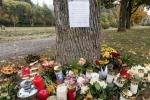 Đức bắt giữ người nhập cư tình nghi cưỡng hiếp, sát hại nữ sinh