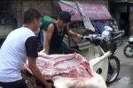 Video: Giá lợn hơi tụt dốc, dân xót xa tự mổ bán bù lỗ