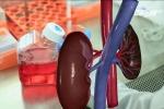 Biết thông tin này, bệnh nhân suy thận sẽ không phải lọc máu