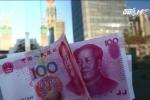Lão nông Trung Quốc chi gần nửa triệu đô chạy chức trưởng thôn