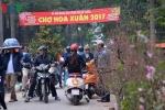 Hà Nội cấm họp chợ hoa Tết trên vỉa hè, đường phố thông thoáng, trật tự