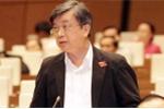 Đại biểu Quốc hội: 'Giám sát ở ngay Formosa chứ không đâu xa cả'