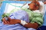 Kiểm lâm bị lâm tặc chém chết ở Lâm Đồng: Chủ mưu là một người phụ nữ