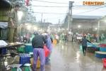 Chợ cá Hà Nội tấp nập trước ngày cúng ông Công ông Táo