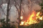 Cháy rừng dữ dội ở Hà Nội: Thông tin mới nhất