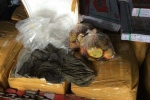 Kinh hoàng phát hiện 1,5 tấn nội tạng thối rữa giấu trong đống gạch