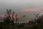 Biển Thừa Thiên – Huế liên tục xuất hiện dải nước màu đỏ