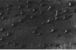 Phát hiện đàn sinh vật ngoài hành tinh trên sao Hỏa