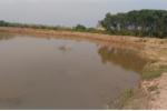 Những ao nuôi tôm rộng mệnh mông trong khu vực rừng ngập mặn đoạn qua xã Quỳnh Thanh