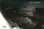 Clip: Trộm đột nhập vào gara ôtô lúc nửa đêm, ngã vào máng dầu thải thảm hại