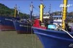 Bình Định: Xử nghiêm các đơn vị đóng tàu gian lận, lấy lại niềm tin của ngư dân