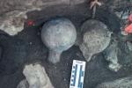 Tìm thấy hóa thạch có thể viết lại toàn bộ lịch sử loài người
