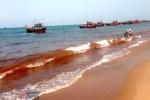 Giải mã vệt nước màu đỏ từng xuất hiện ở Quảng Bình, Hà Tĩnh