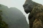 'Kong: Skull Island' liên tục xô đổ nhiều kỷ lục phòng vé tại Việt Nam