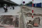 Nguyên nhân hàng loạt cây xanh trên phố Hà Nội đột nhiên biến mất