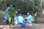Clip: Bé trai 11 tuổi bị bắt cóc, tống tiền rồi sát hại dã man ở Bình Thuận