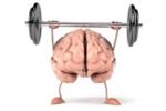 7 loại thảo dược thông thường tốt cho não bộ