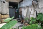 Phải trèo tường vào nhà, bị giam lỏng giữa Thủ Đô: Sự thật bất ngờ