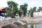 Kỷ luật Tổng giám đốc xây biệt thự không phép ở Sóc Trăng