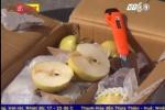 Clip: Tiêu hủy gần 4 tấn lê gắn nhãn Trung Quốc đang trên đường về Hà Nội