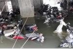 Sinh viên khóc ròng nhìn xe máy chìm dưới biển nước ở hầm ký túc xá