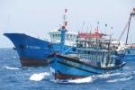 Tin mới vụ tàu cá Quảng Ngãi bị tàu Trung Quốc đâm chìm