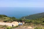Đà Nẵng bác thông tin xây cáp treo trên Sơn Trà