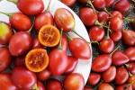 Video: Mục sở thị cà chua lạ giá 1 triệu đồng/kg gây 'sốt' thị trường