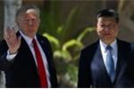 Ông Donald Trump ca ngợi ông Tập Cận Bình là 'người rất tốt'