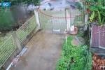 Clip: Khoảnh khắc 2 xe khách đâm nhau kinh hoàng ở Kon Tum