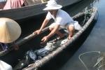 Cá lồng nuôi chết nổi trắng mặt đầm phá Tam Giang