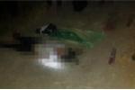 Hai anh em chặn đường hiếp giết nữ sinh rồi phi tang xác