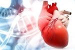 Cảnh báo: 'Ngủ nướng' vào cuối tuần làm tăng nguy cơ mắc bệnh tim