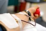 Phát hiện nhân viên bệnh viện và người hiến máu khống tiền để... chia đôi