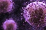 Nghiên cứu mới sử dụng kháng thể điều trị thành công HIV