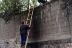Nhóm du khách Trung Quốc trèo tường trốn vé khi tham quan di tích ở Thái Lan