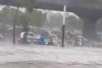 Hà Nội 'oằn mình' trong mưa lớn, gió giật khủng khiếp