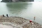 Thanh niên co ro ngồi trên bờ giữ ấm, người già vùng vẫy tắm biển