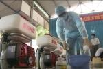 Cách diệt muỗi hiệu quả, phòng chống Zika và sốt xuất huyết