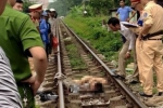 Mải chụp ảnh 'tự sướng', hai thanh niên bị tàu hỏa tông chết thảm