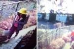 Bé gái Việt bị sát hại ở Nhật: Thông điệp lạ trên trang web của Nhật