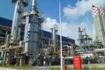 Vi phạm tại tập đoàn hoá chất Việt Nam là rất nghiêm trọng