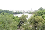 Hà Nội bác thông tin thay cây xanh quanh Hồ Gươm
