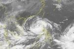 Cập nhật tin mới nhất bão số 7 Sarika trên Biển Đông