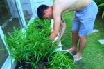 Công Vinh, Thủy Tiên chia sẻ sở thích trồng rau sạch trong biệt thự bạc tỷ