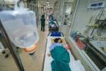 Hà Nội đang quá tải người sốt xuất huyết ở tất cả bệnh viện