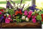 Những ý tưởng hoa Tết độc đáo cho căn hộ tràn ngập sắc xuân