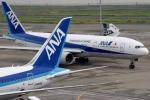 5.000 hành khách hạ cánh vẫn 'dài cổ' chờ hành lý còn trên trời